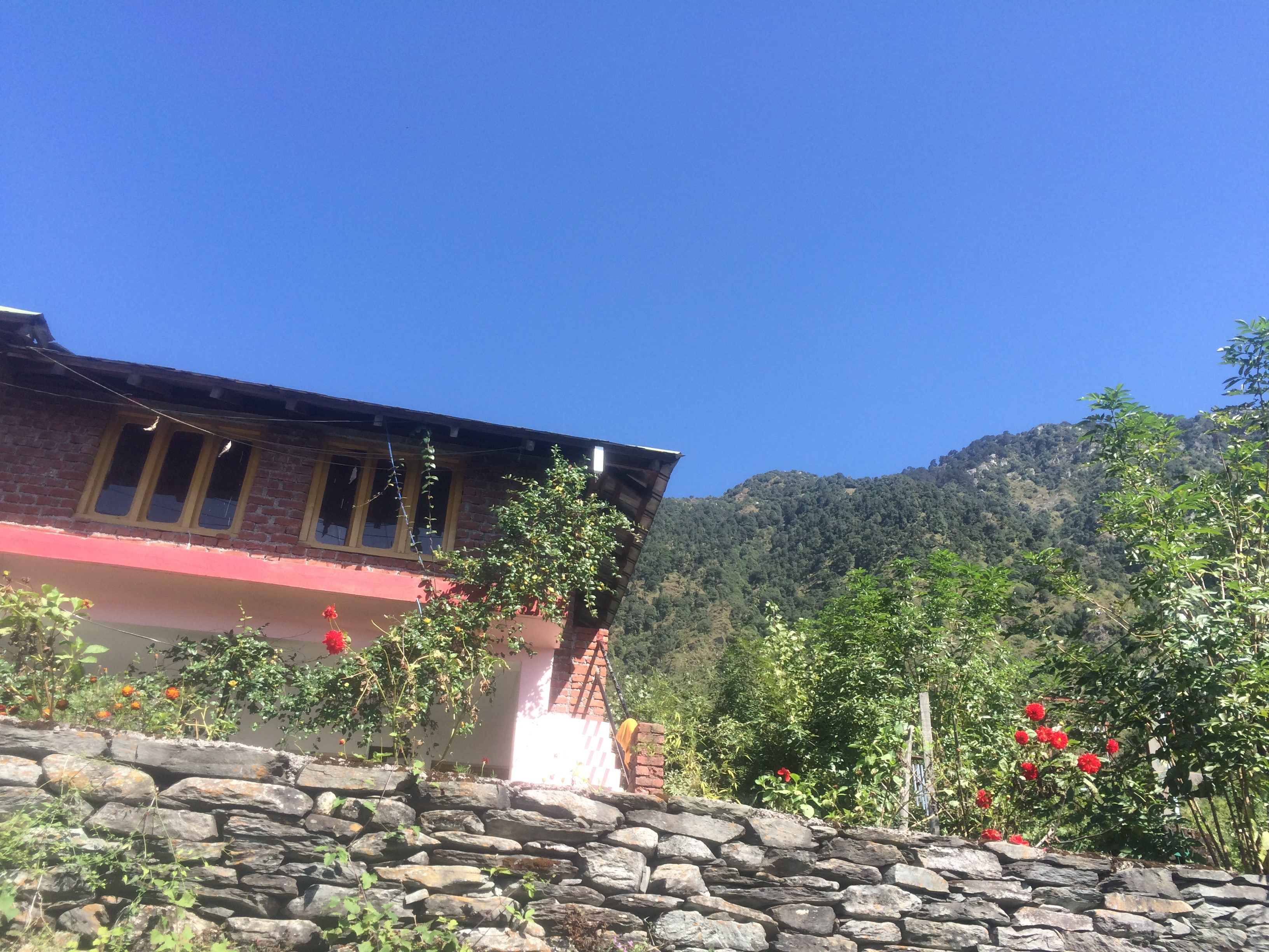 Yoga Teacher Training in Dharamsala