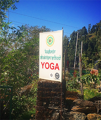 Yoga Teacher Training By Kashmir Shaivism School Of Yoga